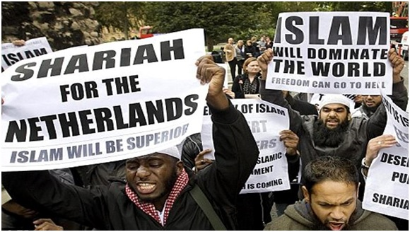 Image result for muslims in europe